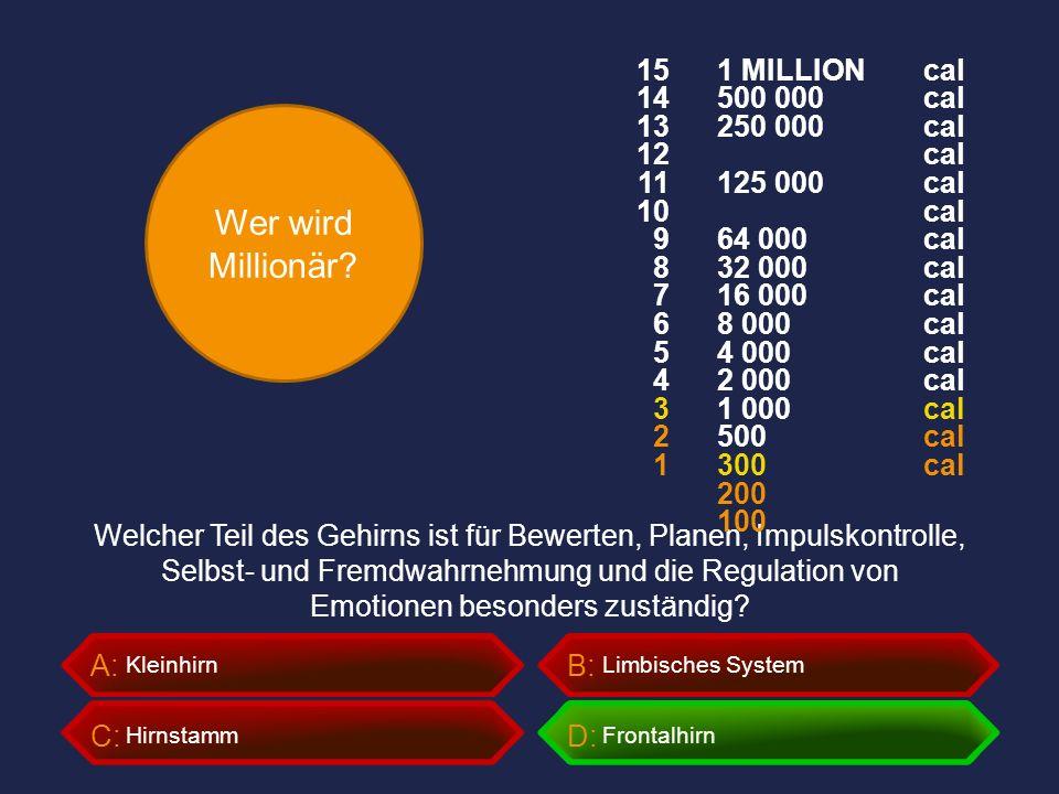 Wer wird Millionär? A:B: C:D: Welcher Teil des Gehirns ist für Bewerten, Planen, Impulskontrolle, Selbst- und Fremdwahrnehmung und die Regulation von
