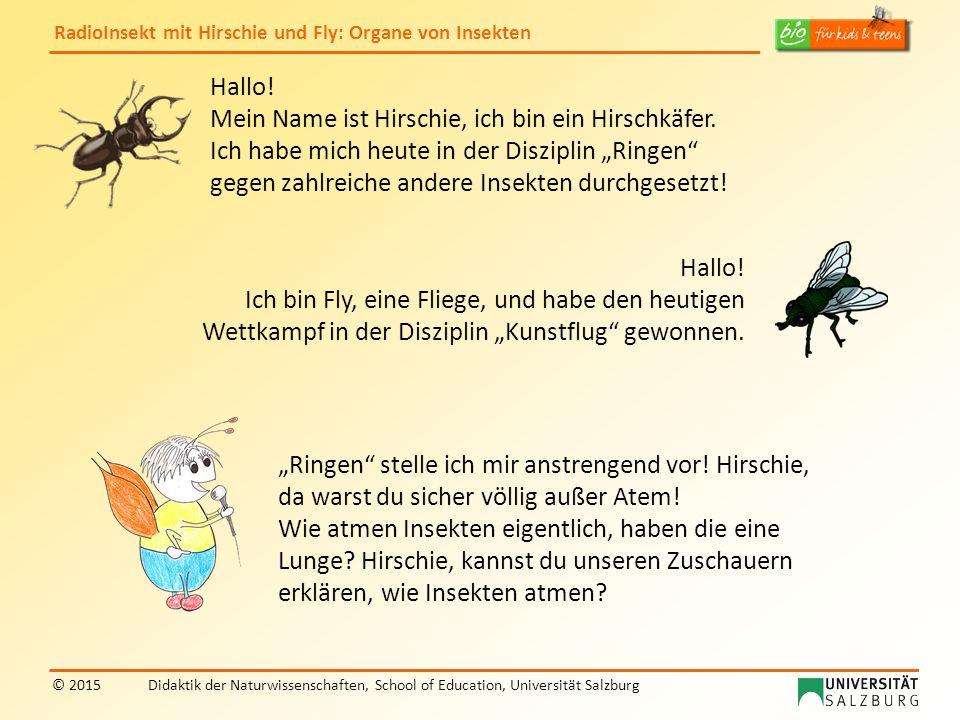 RadioInsekt mit Hirschie und Fly: Organe von Insekten © 2015Didaktik der Naturwissenschaften, School of Education, Universität Salzburg Hallo! Mein Na