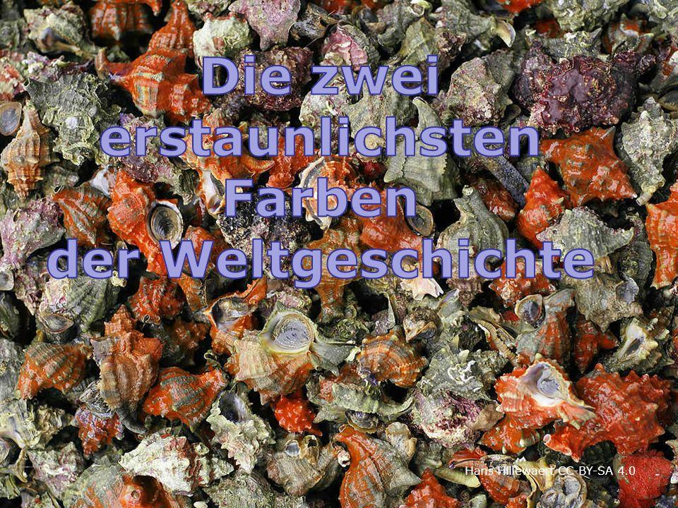 Die 4 Farben der Stiftshütte Matthias Hempel / RL