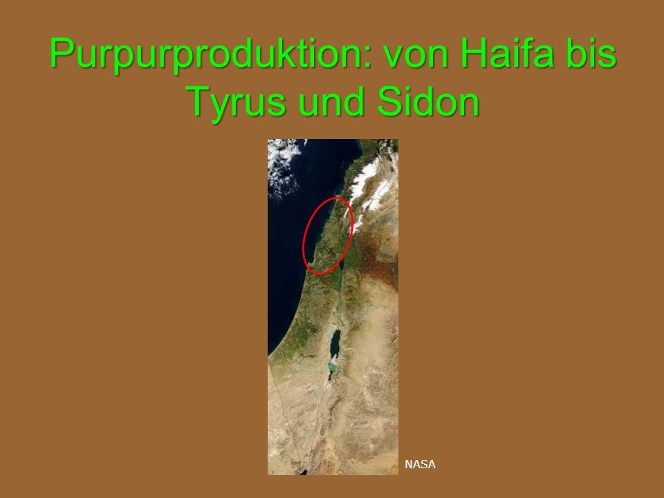 Purpurproduktion: von Haifa bis Tyrus und Sidon NASA