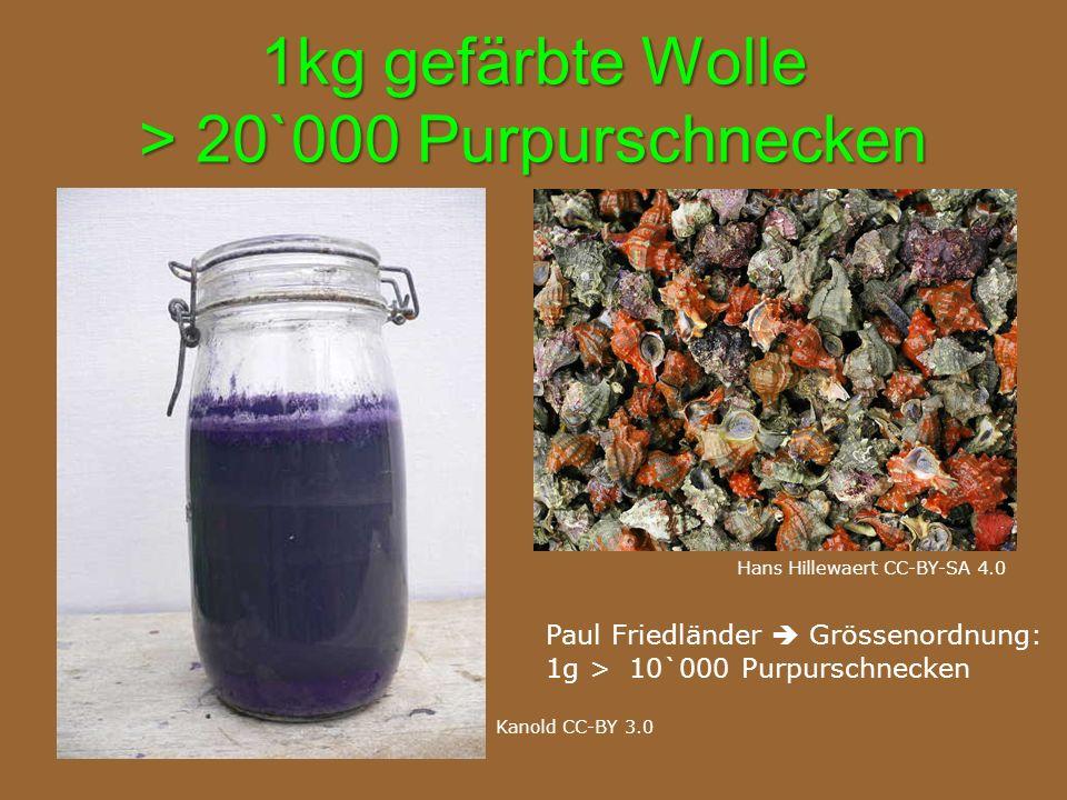 1kg gefärbte Wolle > 20`000 Purpurschnecken Kanold CC-BY 3.0 Hans Hillewaert CC-BY-SA 4.0 Paul Friedländer  Grössenordnung: 1g > 10`000 Purpurschneck