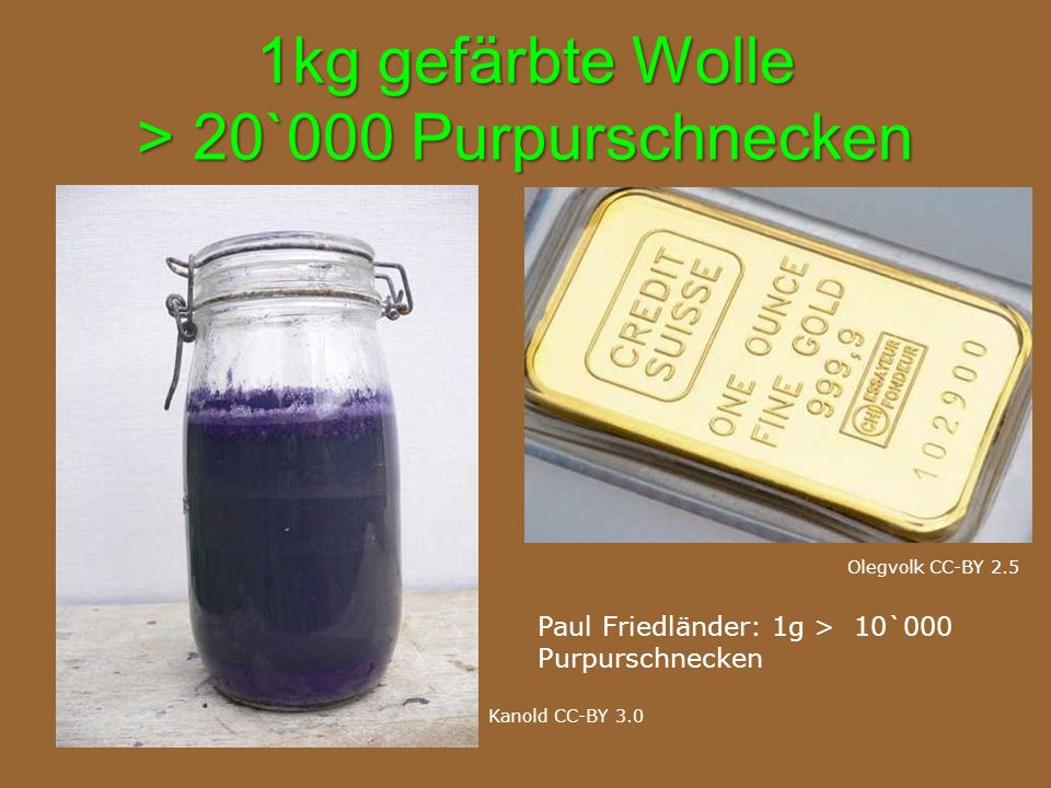 1kg gefärbte Wolle > 20`000 Purpurschnecken Kanold CC-BY 3.0 Olegvolk CC-BY 2.5 Paul Friedländer: 1g > 10`000 Purpurschnecken
