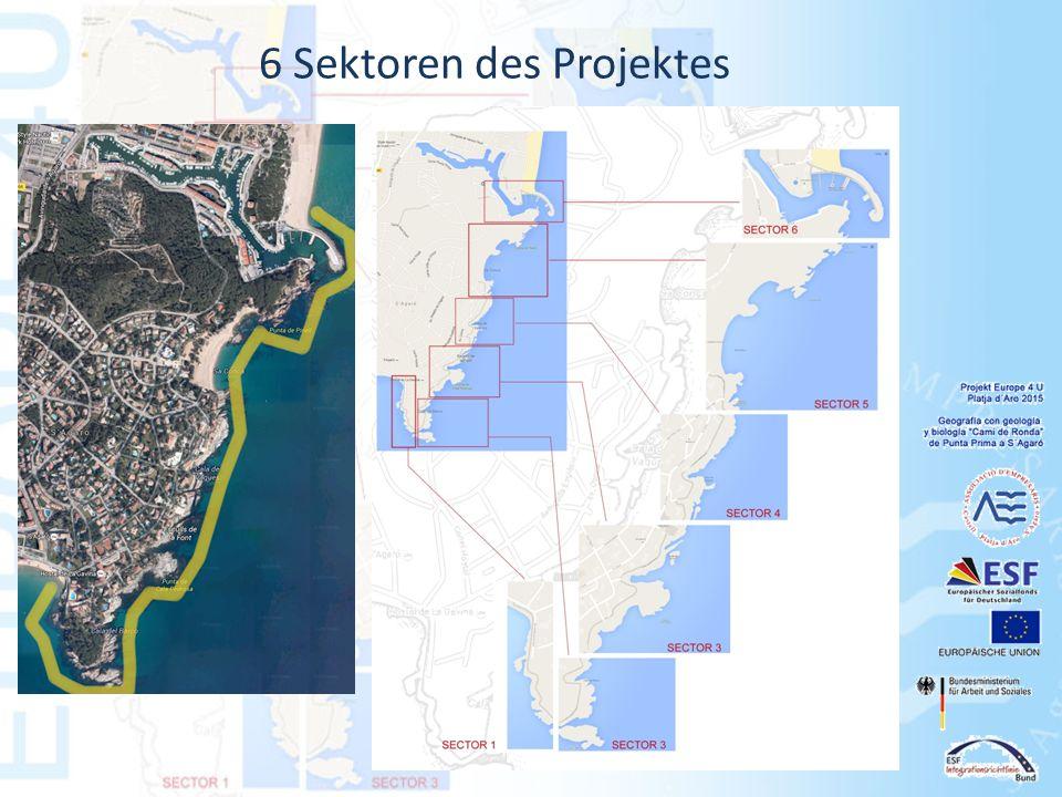6 Sektoren des Projektes