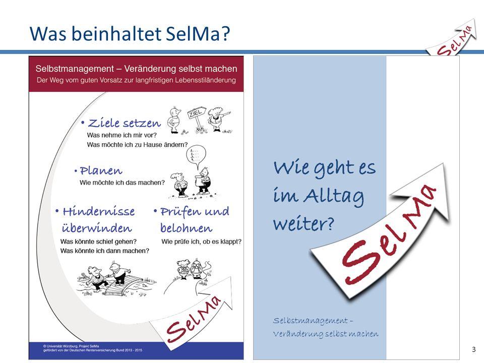 Was beinhaltet SelMa? 3