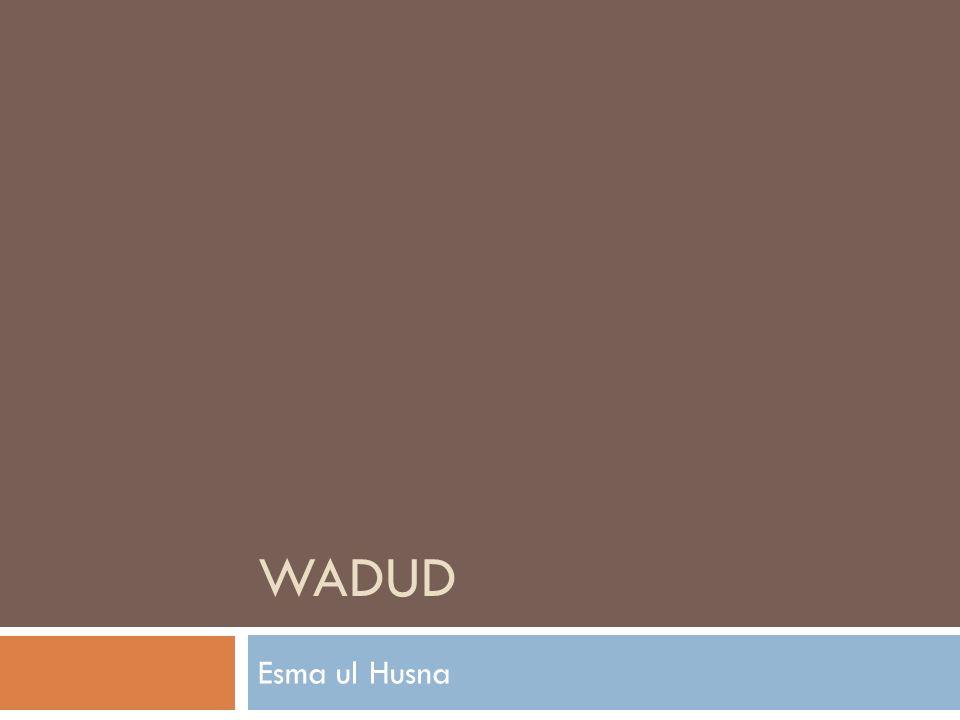 WADUD Esma ul Husna