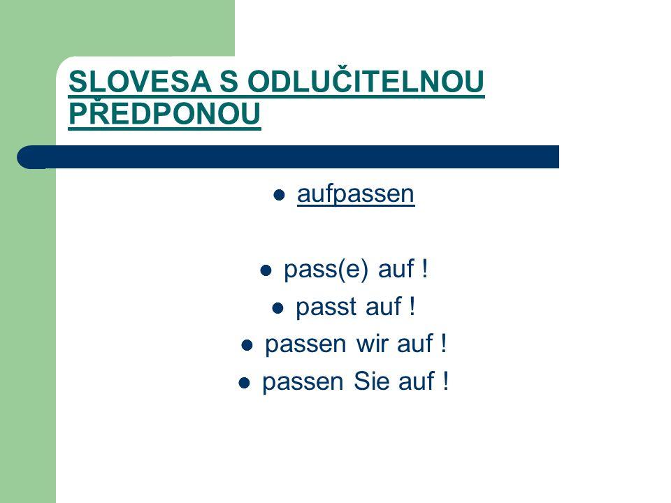 SLOVESA S ODLUČITELNOU PŘEDPONOU aufpassen pass(e) auf .