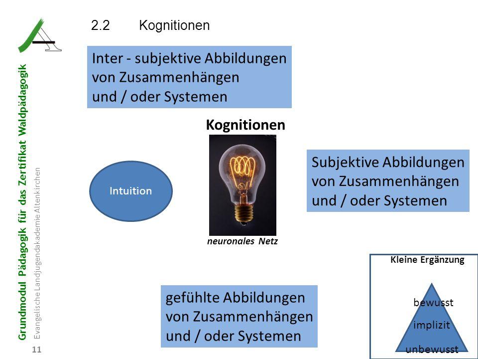 Grundmodul Pädagogik für das Zertifikat Waldpädagogik Evangelische Landjugendakademie Altenkirchen 11 Kognitionen neuronales Netz Subjektive Abbildung