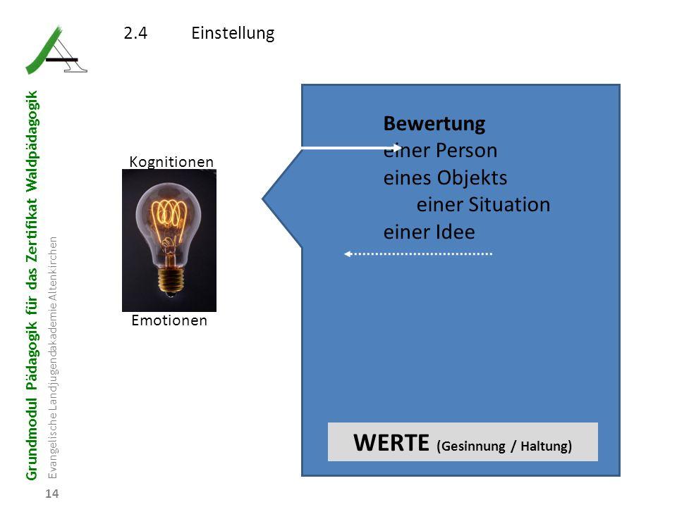 Grundmodul Pädagogik für das Zertifikat Waldpädagogik Evangelische Landjugendakademie Altenkirchen 14 2.4Einstellung Kognitionen Emotionen Bewertung e