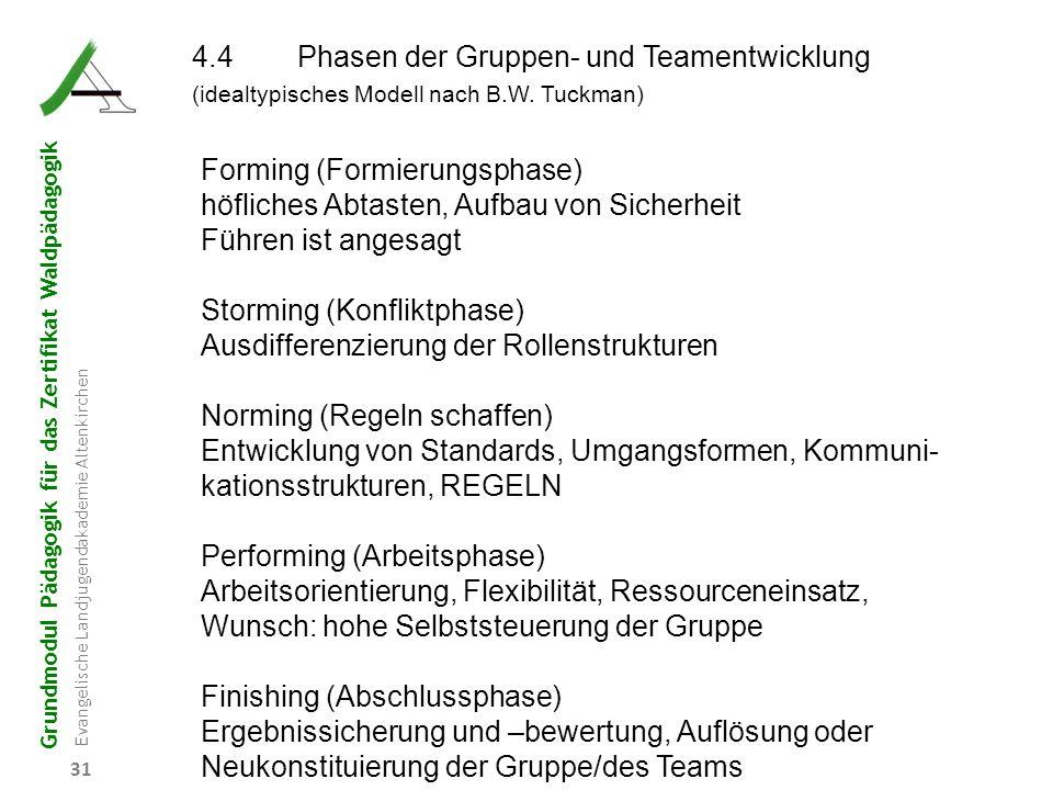 Grundmodul Pädagogik für das Zertifikat Waldpädagogik Evangelische Landjugendakademie Altenkirchen 31 4.4Phasen der Gruppen- und Teamentwicklung (idea