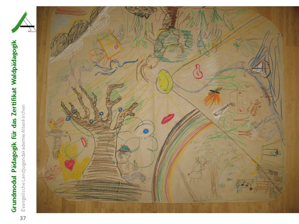 Grundmodul Pädagogik für das Zertifikat Waldpädagogik Evangelische Landjugendakademie Altenkirchen 37
