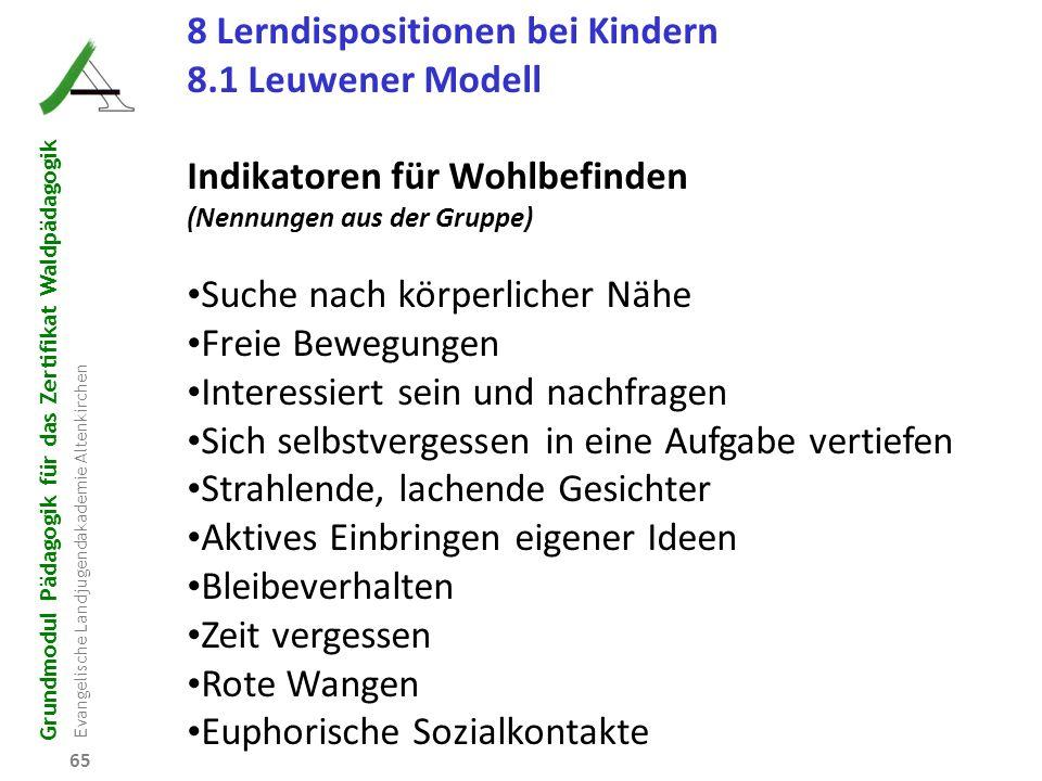 Grundmodul Pädagogik für das Zertifikat Waldpädagogik Evangelische Landjugendakademie Altenkirchen 65 8 Lerndispositionen bei Kindern 8.1 Leuwener Mod