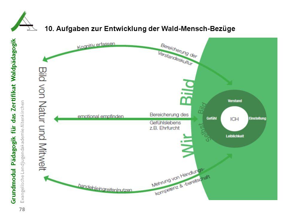 Grundmodul Pädagogik für das Zertifikat Waldpädagogik Evangelische Landjugendakademie Altenkirchen 78 10. Aufgaben zur Entwicklung der Wald-Mensch-Bez