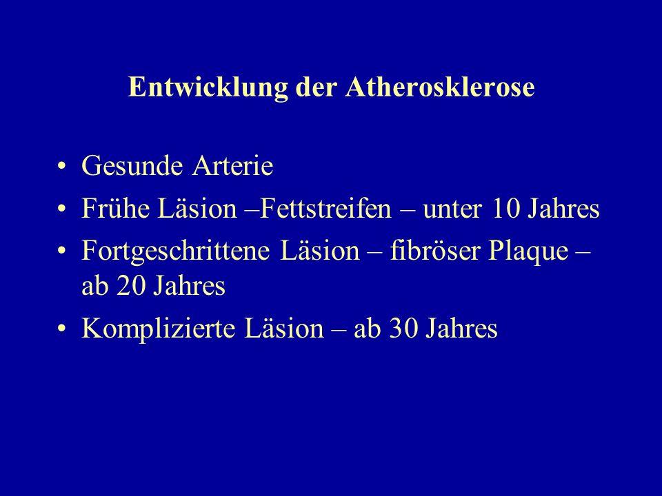 Entwicklung der Atherosklerose Gesunde Arterie Frühe Läsion –Fettstreifen – unter 10 Jahres Fortgeschrittene Läsion – fibröser Plaque – ab 20 Jahres K