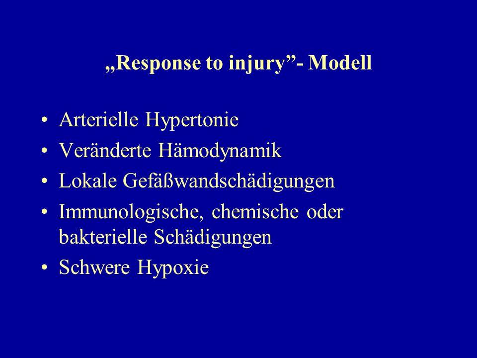 """""""Response to injury""""- Modell Arterielle Hypertonie Veränderte Hämodynamik Lokale Gefäßwandschädigungen Immunologische, chemische oder bakterielle Schä"""