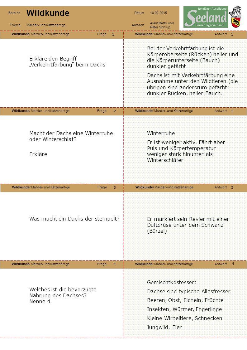 """Wildkunde/ Marder- und KatzenartigeFrageWildkunde/ Marder- und KatzenartigeAntwort Wildkunde/ Marder- und KatzenartigeFrageWildkunde/ Marder- und KatzenartigeAntwort Wildkunde/ Marder- und KatzenartigeFrageWildkunde/ Marder- und KatzenartigeAntwort Wildkunde/ Marder- und KatzenartigeFrageWildkunde/ Marder- und KatzenartigeAntwort Bereich Wildkunde Datum10.02.2015 ThemaMarder- und KatzenartigeAutoren Alain Batzli und Peter Schlup 11 2 4 3 2 3 4 Erkläre den Begriff """"Verkehrtfärbung beim Dachs Bei der Verkehrtfärbung ist die Körperoberseite (Rücken) heller und die Körperunterseite (Bauch) dunkler gefärbt Dachs ist mit Verkehrtfärbung eine Ausnahme unter den Wildtieren (die übrigen sind andersrum gefärbt: dunkler Rücken, heller Bauch."""