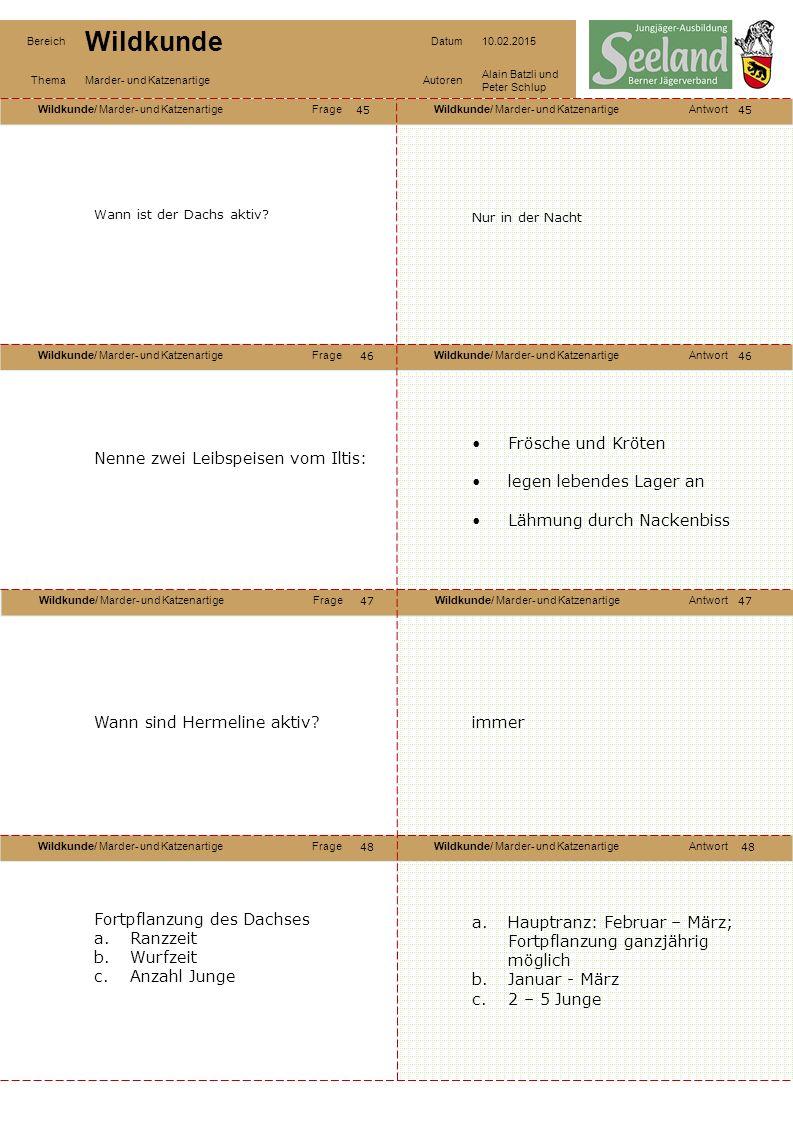 Wildkunde/ Marder- und KatzenartigeFrageWildkunde/ Marder- und KatzenartigeAntwort Wildkunde/ Marder- und KatzenartigeFrageWildkunde/ Marder- und KatzenartigeAntwort Wildkunde/ Marder- und KatzenartigeFrageWildkunde/ Marder- und KatzenartigeAntwort Wildkunde/ Marder- und KatzenartigeFrageWildkunde/ Marder- und KatzenartigeAntwort Bereich Wildkunde Datum10.02.2015 ThemaMarder- und KatzenartigeAutoren Alain Batzli und Peter Schlup 45 46 48 47 46 47 48 Wann ist der Dachs aktiv.