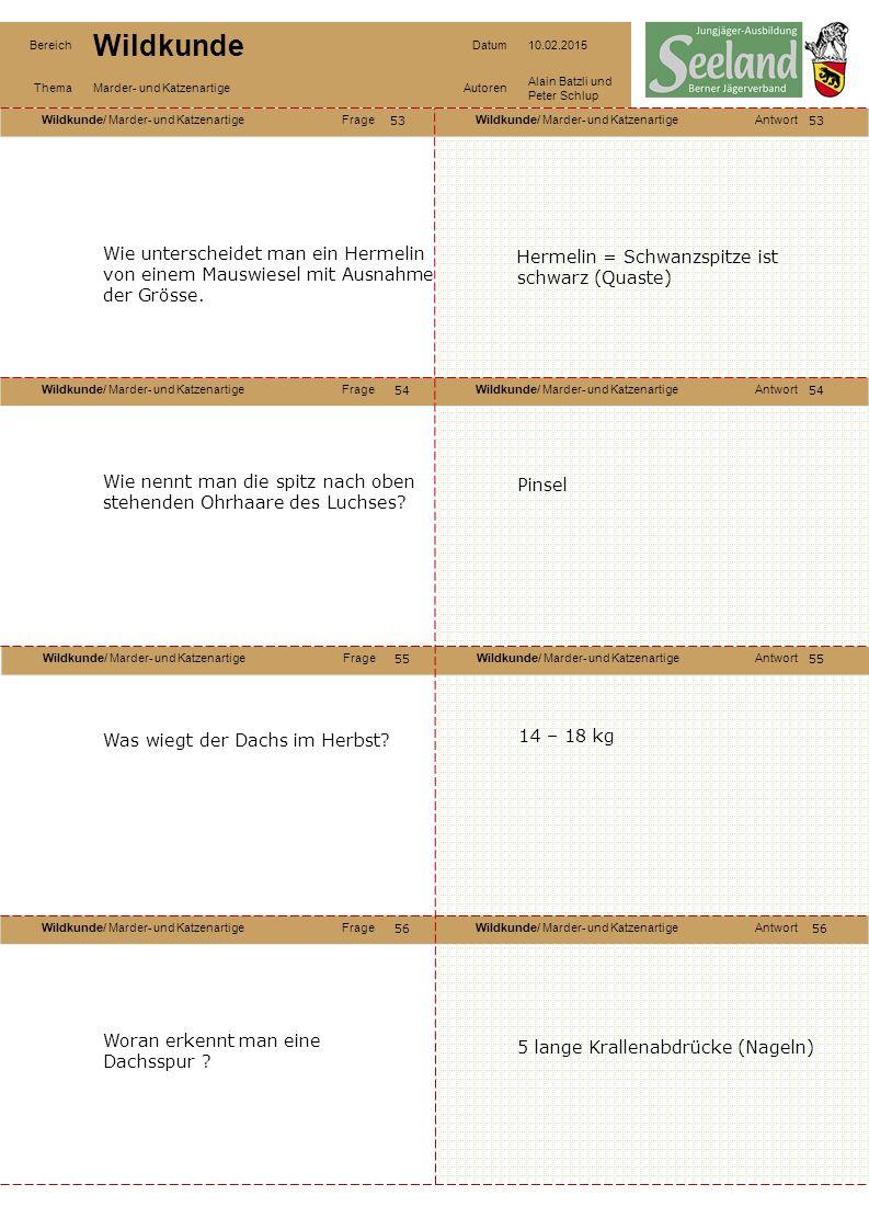 Wildkunde/ Marder- und KatzenartigeFrageWildkunde/ Marder- und KatzenartigeAntwort Wildkunde/ Marder- und KatzenartigeFrageWildkunde/ Marder- und KatzenartigeAntwort Wildkunde/ Marder- und KatzenartigeFrageWildkunde/ Marder- und KatzenartigeAntwort Wildkunde/ Marder- und KatzenartigeFrageWildkunde/ Marder- und KatzenartigeAntwort Bereich Wildkunde Datum10.02.2015 ThemaMarder- und KatzenartigeAutoren Alain Batzli und Peter Schlup 53 54 56 55 54 55 56 Wie unterscheidet man ein Hermelin von einem Mauswiesel mit Ausnahme der Grösse.