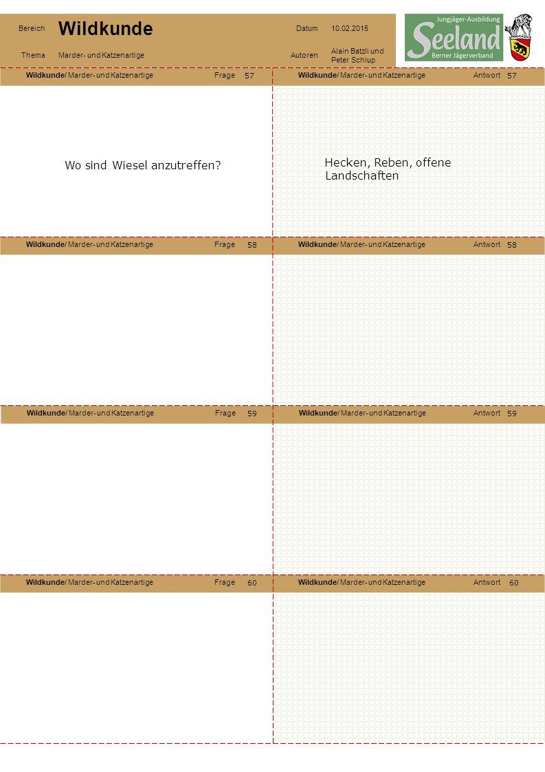 Wildkunde/ Marder- und KatzenartigeFrageWildkunde/ Marder- und KatzenartigeAntwort Wildkunde/ Marder- und KatzenartigeFrageWildkunde/ Marder- und KatzenartigeAntwort Wildkunde/ Marder- und KatzenartigeFrageWildkunde/ Marder- und KatzenartigeAntwort Wildkunde/ Marder- und KatzenartigeFrageWildkunde/ Marder- und KatzenartigeAntwort Bereich Wildkunde Datum10.02.2015 ThemaMarder- und KatzenartigeAutoren Alain Batzli und Peter Schlup 57 58 60 59 58 59 60 Wo sind Wiesel anzutreffen.