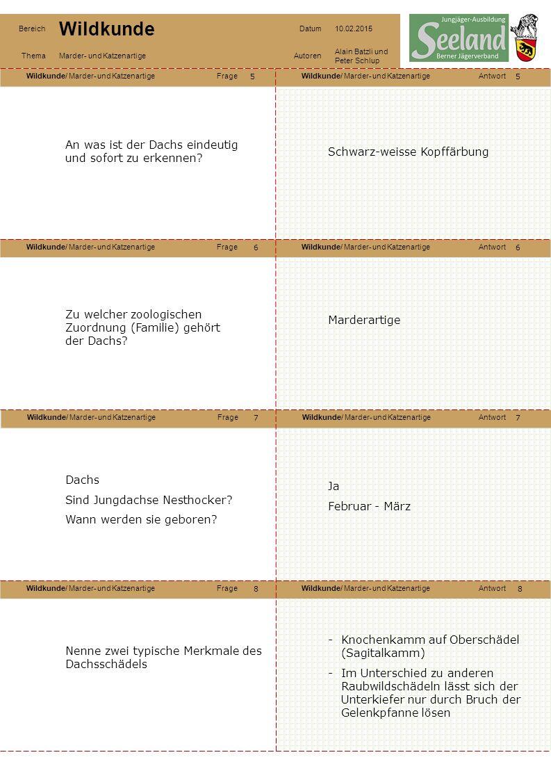 Wildkunde/ Marder- und KatzenartigeFrageWildkunde/ Marder- und KatzenartigeAntwort Wildkunde/ Marder- und KatzenartigeFrageWildkunde/ Marder- und KatzenartigeAntwort Wildkunde/ Marder- und KatzenartigeFrageWildkunde/ Marder- und KatzenartigeAntwort Wildkunde/ Marder- und KatzenartigeFrageWildkunde/ Marder- und KatzenartigeAntwort Bereich Wildkunde Datum10.02.2015 ThemaMarder- und KatzenartigeAutoren Alain Batzli und Peter Schlup 55 6 8 7 6 7 8 An was ist der Dachs eindeutig und sofort zu erkennen.