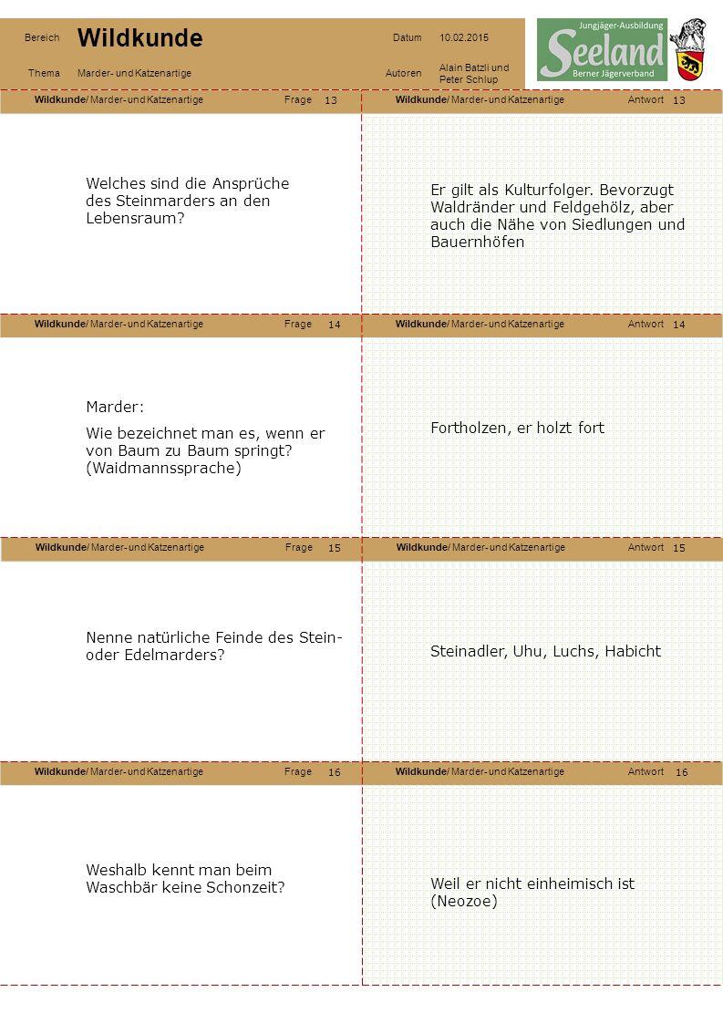 Wildkunde/ Marder- und KatzenartigeFrageWildkunde/ Marder- und KatzenartigeAntwort Wildkunde/ Marder- und KatzenartigeFrageWildkunde/ Marder- und KatzenartigeAntwort Wildkunde/ Marder- und KatzenartigeFrageWildkunde/ Marder- und KatzenartigeAntwort Wildkunde/ Marder- und KatzenartigeFrageWildkunde/ Marder- und KatzenartigeAntwort Bereich Wildkunde Datum10.02.2015 ThemaMarder- und KatzenartigeAutoren Alain Batzli und Peter Schlup 13 14 16 15 14 15 16 Welches sind die Ansprüche des Steinmarders an den Lebensraum.
