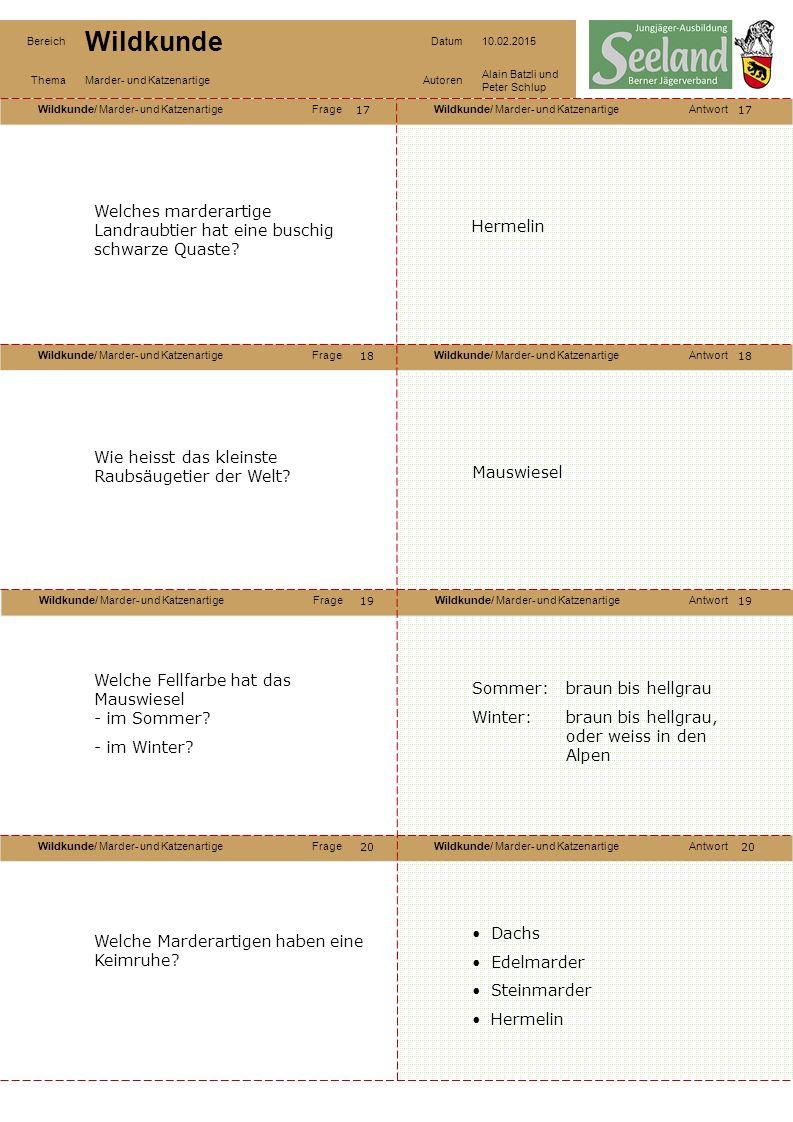 Wildkunde/ Marder- und KatzenartigeFrageWildkunde/ Marder- und KatzenartigeAntwort Wildkunde/ Marder- und KatzenartigeFrageWildkunde/ Marder- und KatzenartigeAntwort Wildkunde/ Marder- und KatzenartigeFrageWildkunde/ Marder- und KatzenartigeAntwort Wildkunde/ Marder- und KatzenartigeFrageWildkunde/ Marder- und KatzenartigeAntwort Bereich Wildkunde Datum10.02.2015 ThemaMarder- und KatzenartigeAutoren Alain Batzli und Peter Schlup 17 18 20 19 18 19 20 Welches marderartige Landraubtier hat eine buschig schwarze Quaste.