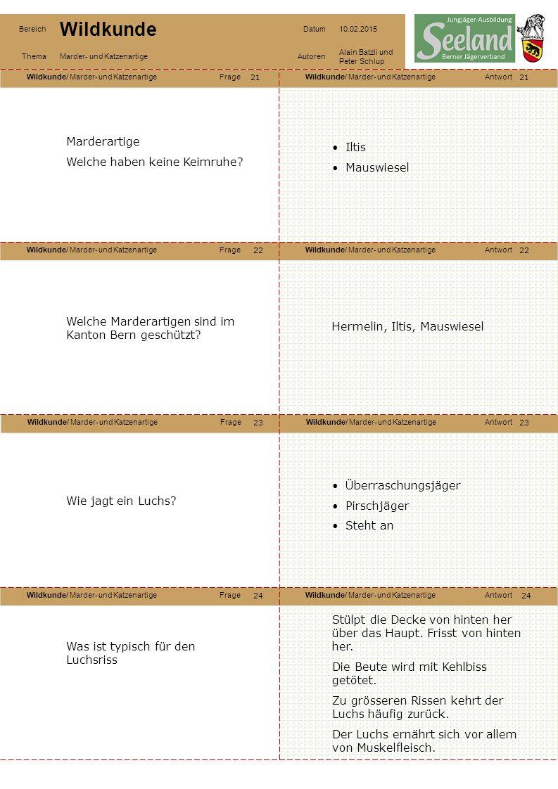 Wildkunde/ Marder- und KatzenartigeFrageWildkunde/ Marder- und KatzenartigeAntwort Wildkunde/ Marder- und KatzenartigeFrageWildkunde/ Marder- und KatzenartigeAntwort Wildkunde/ Marder- und KatzenartigeFrageWildkunde/ Marder- und KatzenartigeAntwort Wildkunde/ Marder- und KatzenartigeFrageWildkunde/ Marder- und KatzenartigeAntwort Bereich Wildkunde Datum10.02.2015 ThemaMarder- und KatzenartigeAutoren Alain Batzli und Peter Schlup 21 22 24 23 22 23 24 Marderartige Welche haben keine Keimruhe.