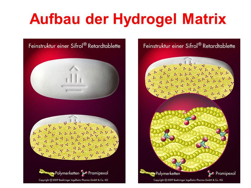 Aufbau der Hydrogel Matrix