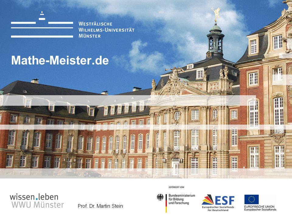 Prof. Dr. Martin Stein Mathe-Meister.de