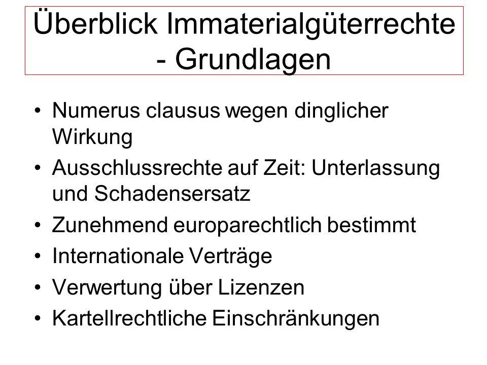 Überblick Immaterialgüterrechte - Grundlagen Numerus clausus wegen dinglicher Wirkung Ausschlussrechte auf Zeit: Unterlassung und Schadensersatz Zuneh