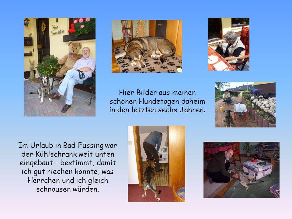 Der jährliche Urlaub in Bad Füssing war einer der Höhepunkte in meinen Hundejahren bei Heinz und Gundi.