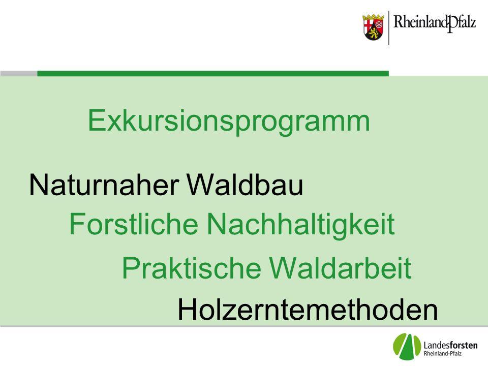 Exkursionsprogramm Forstliche Nachhaltigkeit Holzerntemethoden Praktische Waldarbeit Naturnaher Waldbau