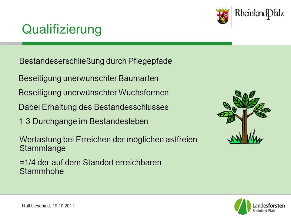 Ralf Lieschied, 19.10.2011 Qualifizierung Beseitigung unerwünschter Baumarten Beseitigung unerwünschter Wuchsformen Dabei Erhaltung des Bestandesschlu