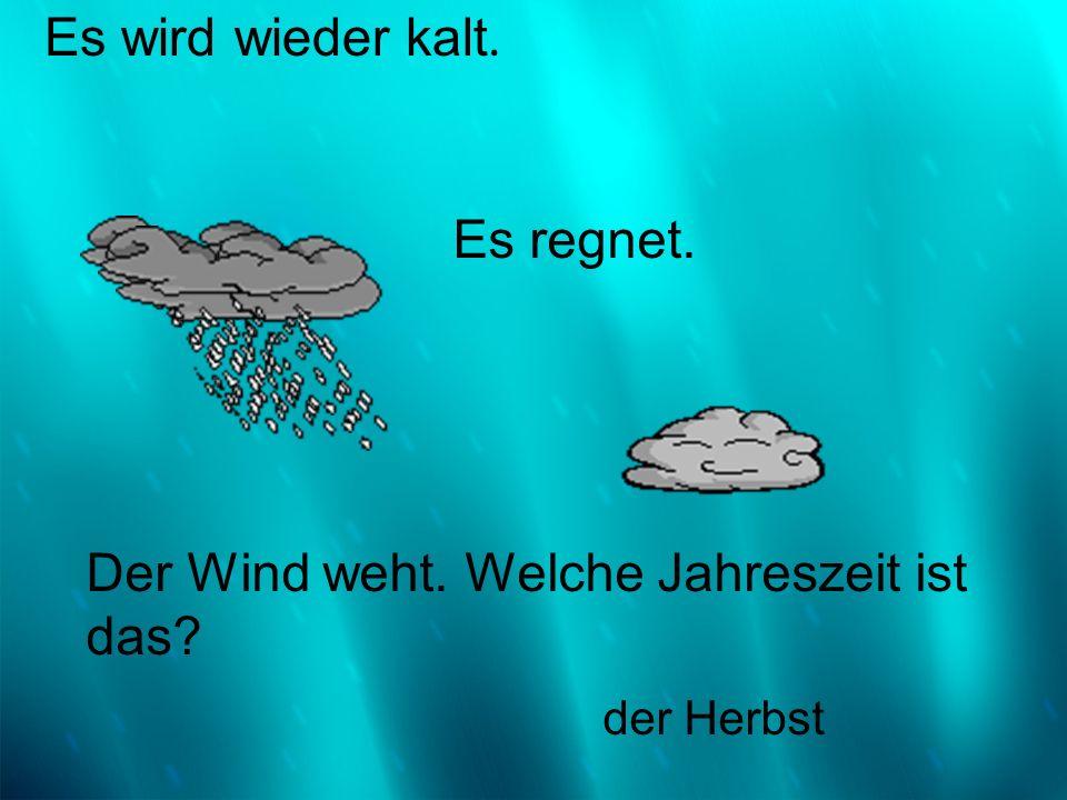 Es wird wieder kalt. der Herbst Es regnet. Der Wind weht. Welche Jahreszeit ist das?