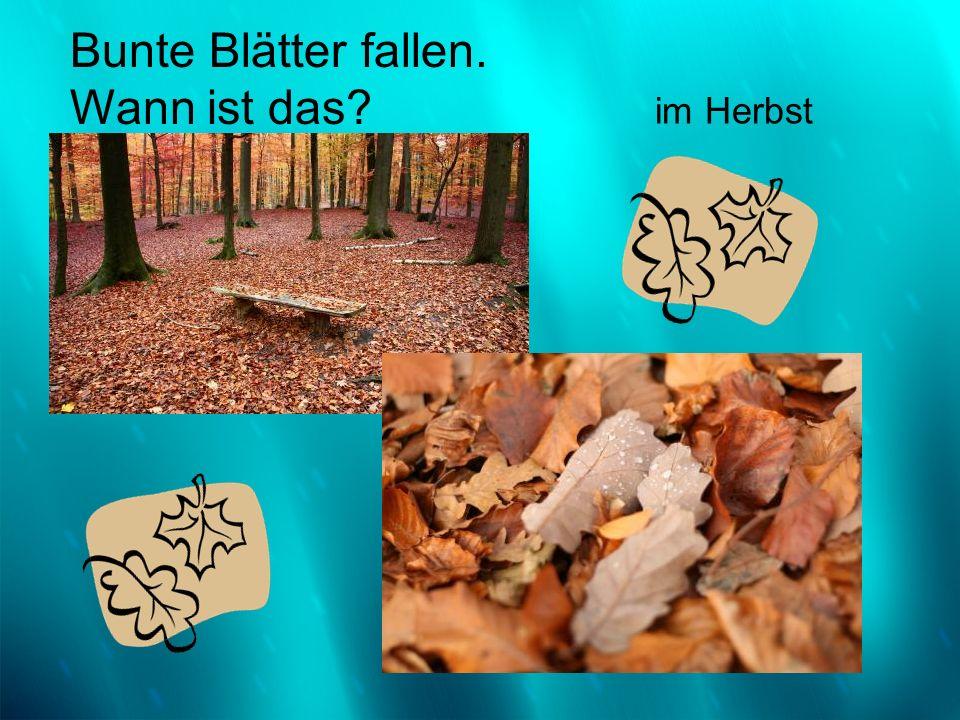 der Herbst Bunte Blätter fallen. Wann ist das? im Herbst