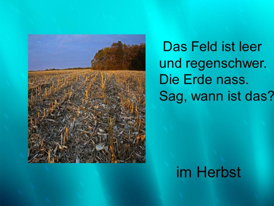 Das Feld ist leer und regenschwer. Die Erde nass. Sag, wann ist das? im Herbst