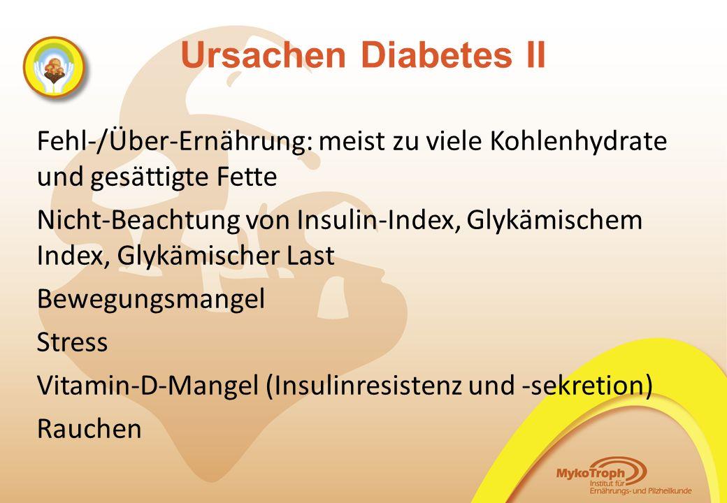 Ursachen Diabetes II Fehl-/Über-Ernährung: meist zu viele Kohlenhydrate und gesättigte Fette Nicht-Beachtung von Insulin-Index, Glykämischem Index, Gl