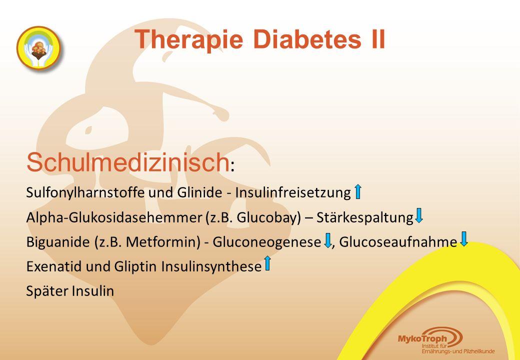 Therapie Diabetes II Schulmedizinisch : Sulfonylharnstoffe und Glinide - Insulinfreisetzung Alpha-Glukosidasehemmer (z.B. Glucobay) – Stärkespaltung B