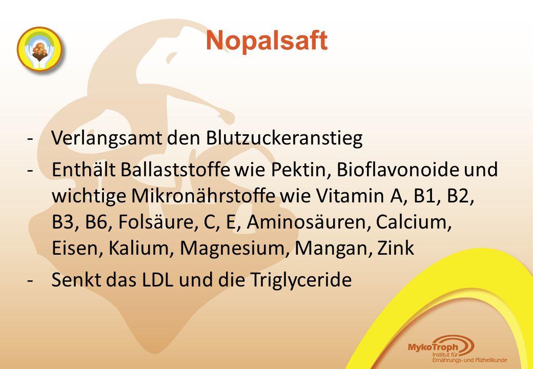 Nopalsaft - Verlangsamt den Blutzuckeranstieg -Enthält Ballaststoffe wie Pektin, Bioflavonoide und wichtige Mikronährstoffe wie Vitamin A, B1, B2, B3,