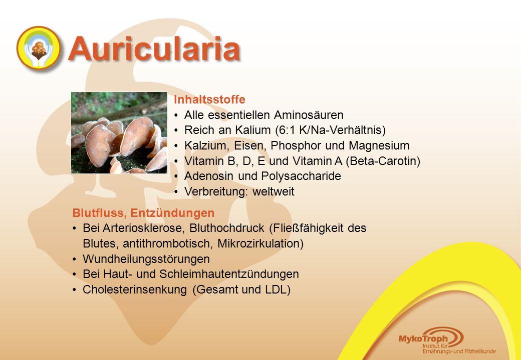 Inhaltsstoffe Alle essentiellen Aminosäuren Reich an Kalium (6:1 K/Na-Verhältnis) Kalzium, Eisen, Phosphor und Magnesium Vitamin B, D, E und Vitamin