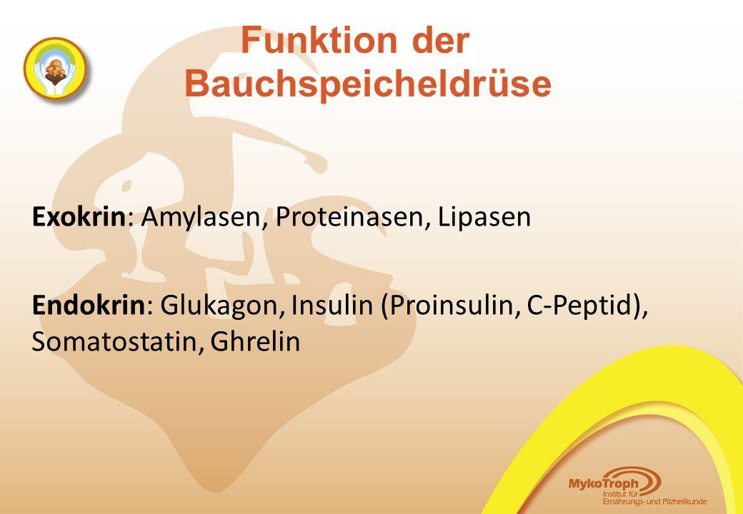 Funktion der Bauchspeicheldrüse Exokrin: Amylasen, Proteinasen, Lipasen Endokrin: Glukagon, Insulin (Proinsulin, C-Peptid), Somatostatin, Ghrelin