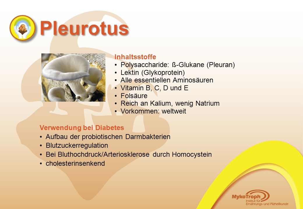 Inhaltsstoffe Polysaccharide: ß-Glukane (Pleuran) Lektin (Glykoprotein) Alle essentiellen Aminosäuren Vitamin B, C, D und E Folsäure Reich an Kalium