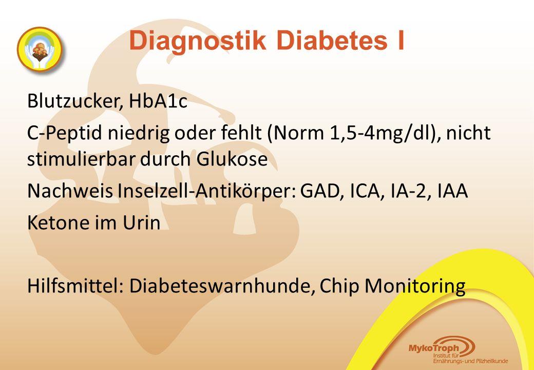 Diagnostik Diabetes I Blutzucker, HbA1c C-Peptid niedrig oder fehlt (Norm 1,5-4mg/dl), nicht stimulierbar durch Glukose Nachweis Inselzell-Antikörper: