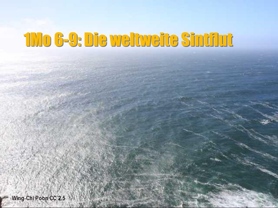 1Mo 6-9: Die weltweite Sintflut 1Mo 7: 10 Und es geschah nach sieben Tagen, da kamen die Wasser der Flut über die Erde.