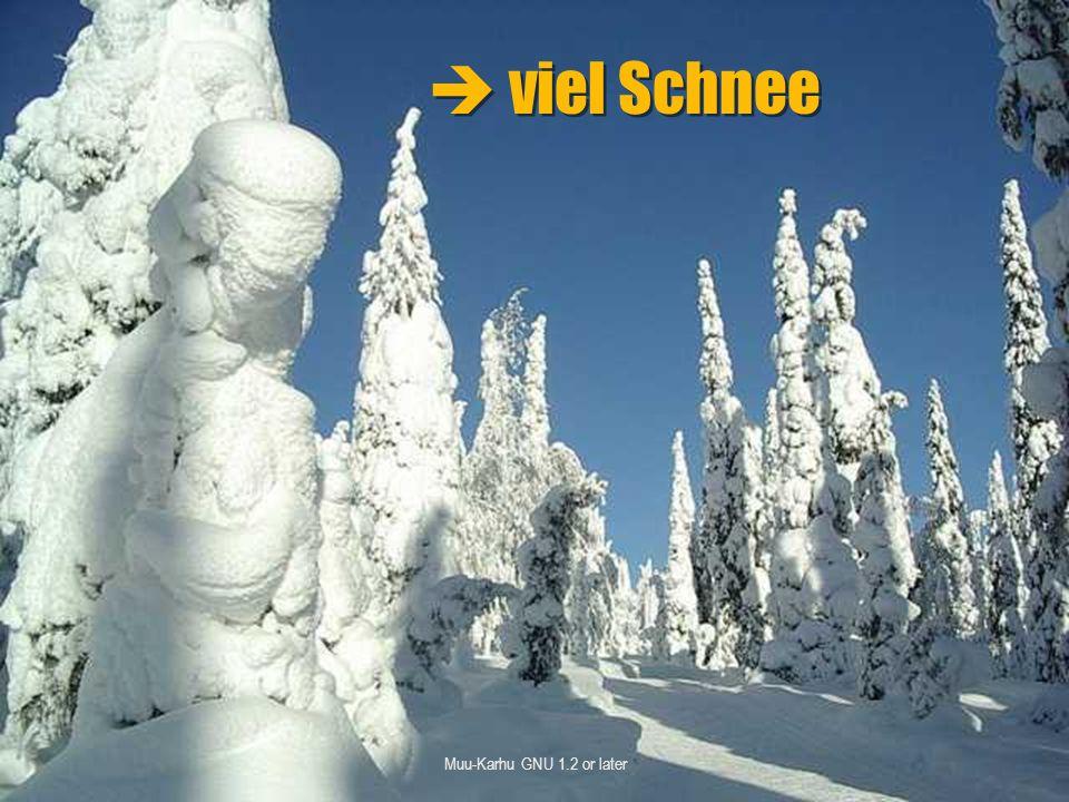  viel Schnee Muu-Karhu GNU 1.2 or later