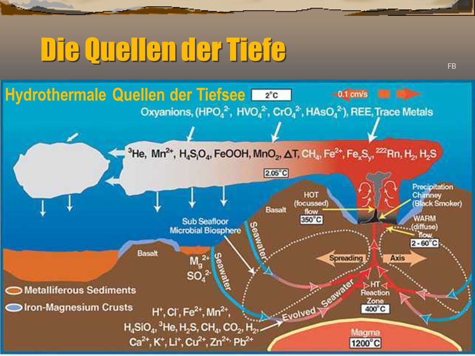 Die Quellen der Tiefe Hiob 38: 16 Bist du gekommen bis zu den Quellen des Meeres, und hast du die Gründe der Tiefe durchwandelt.