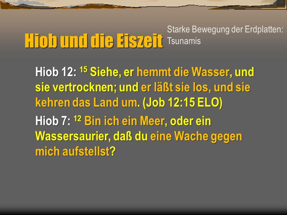 Hiob und die Eiszeit Hiob 12: 15 Siehe, er hemmt die Wasser, und sie vertrocknen; und er läßt sie los, und sie kehren das Land um. (Job 12:15 ELO) Hio