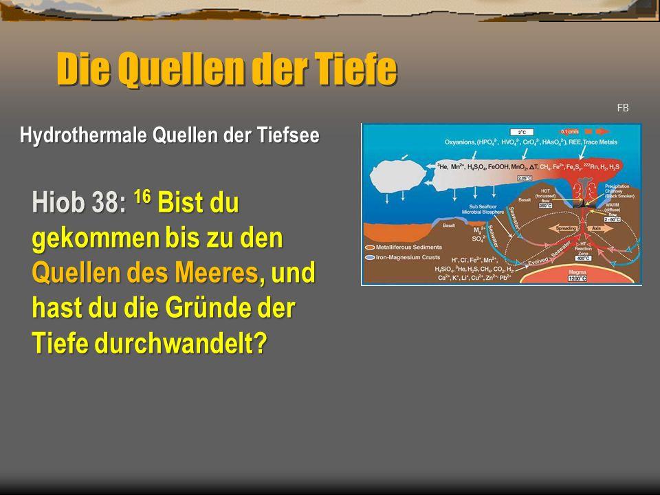 NASA 1Mo 8: 4 Und im siebten Monat, am siebzehnten Tage des Monats, ruhte die Arche auf dem Gebirge Ararat.