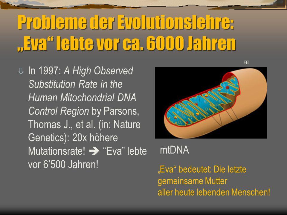 "Probleme der Evolutionslehre: ""Eva"" lebte vor ca. 6000 Jahren ò In 1997: A High Observed Substitution Rate in the Human Mitochondrial DNA Control Regi"