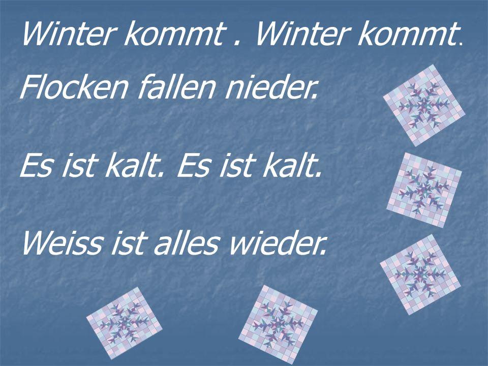 Winter kommt. Flocken fallen nieder. Es ist kalt. Weiss ist alles wieder.
