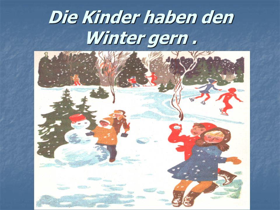 Die Kinder haben den Winter gern.
